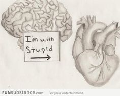 brainheart im with stupid funsubstancescom