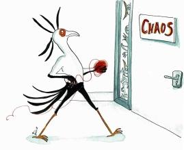 Welkom in de chaos vogel